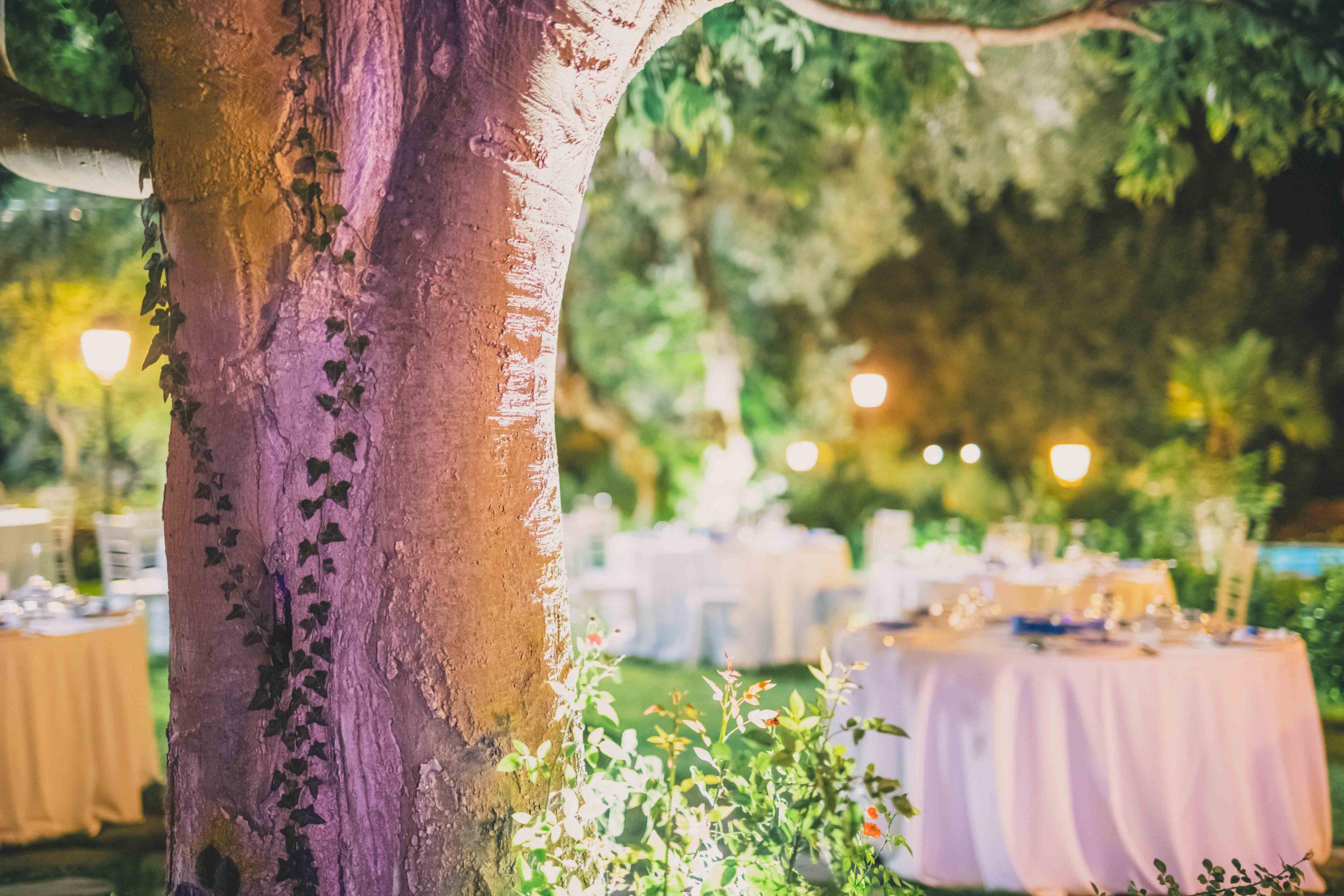 Elegante, storica e immersa nella natura: Villa Musmeci è la location perfetta per un matrimonio in grande stile.