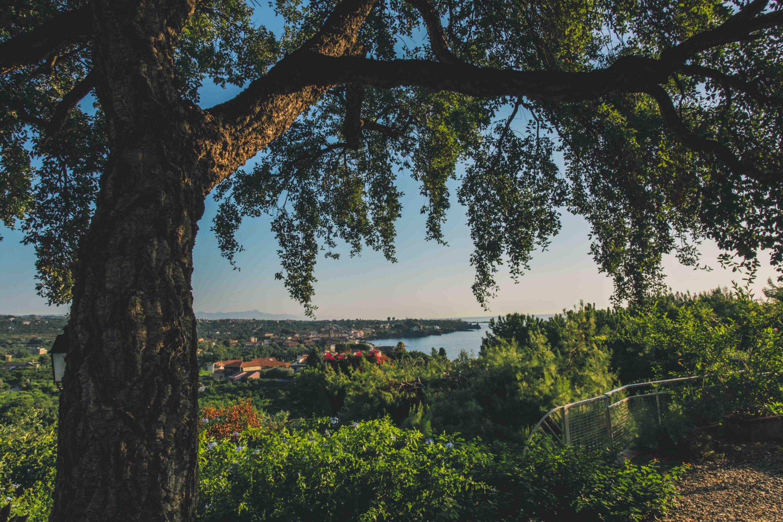 Ogni volta che sfioriamo la Natura, riceviamo molto più di quanto non potremo mai dare: i suoni, i colori e i profumi che ci regala vengono colti dalle anime più nobili. E qui, a Villa Musmeci, siamo circondati dalla vera Bellezza che desideriamo condividere con voi. Tuffati nei verdi prati, accarezza le foglie che scivolano via dagli alberi e vivi il tuo giorno speciale all'insegna della vera idea di felicità.